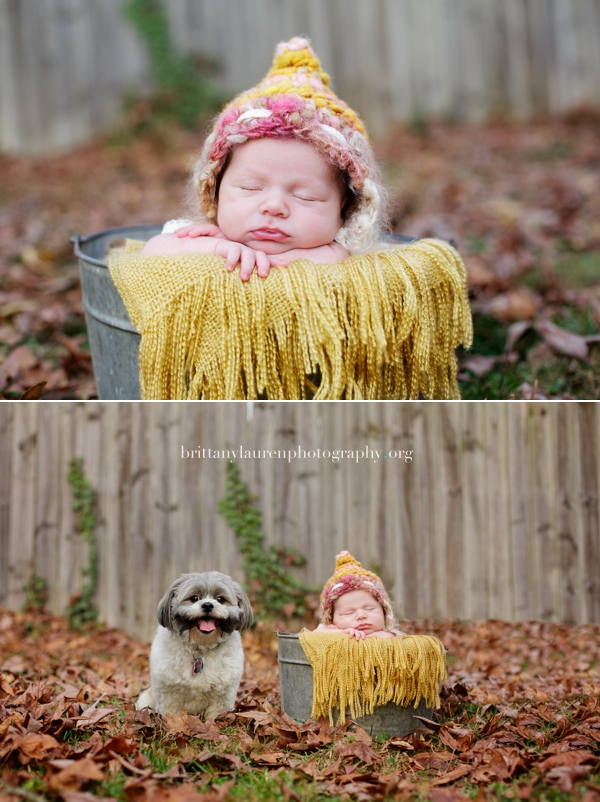 Outdoor newborn picture with dog