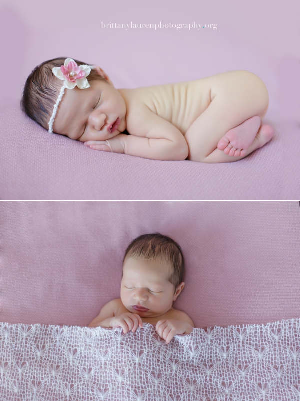 Best Charlotte newborn photographer