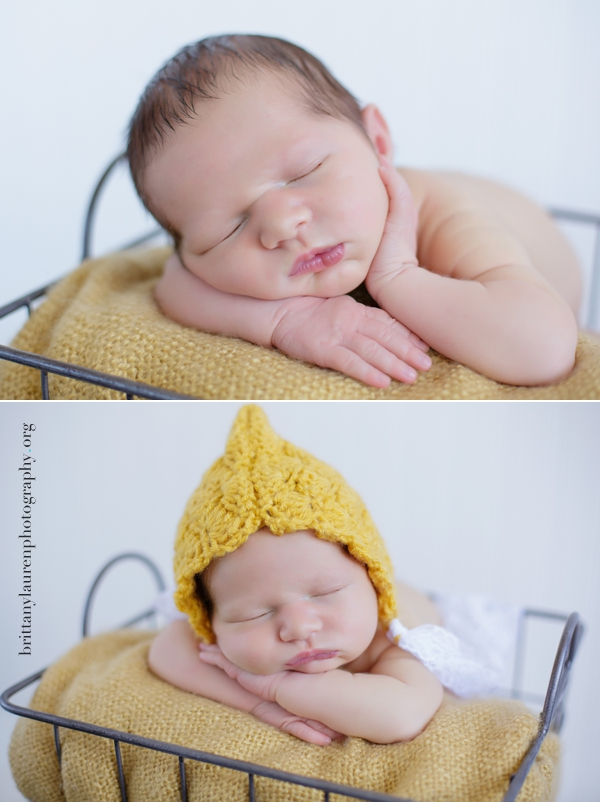 Charlotte newborn photographer
